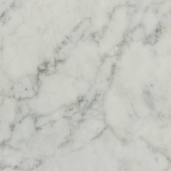 White Carrara Marble swatch