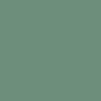 Matte Powder Green swatch