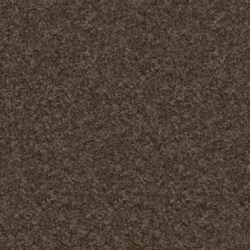 Ecobrown swatch