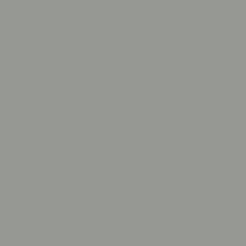 Signal Grey swatch
