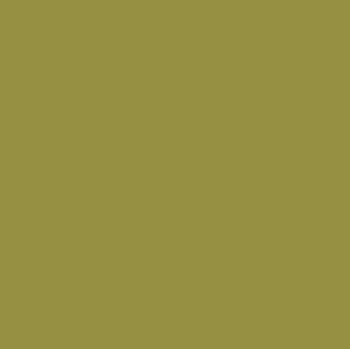 Accent Green swatch