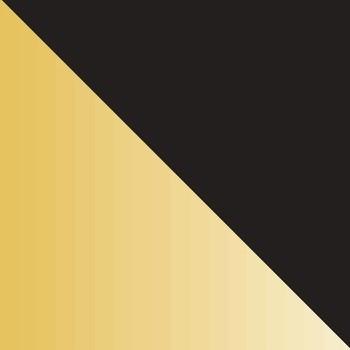 Black Exterior, Brass Interior swatch